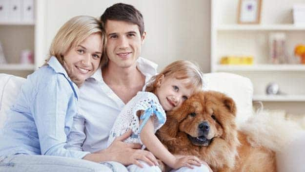 Wills & Trusts dog-young-family Direct Wills Chalk Farm
